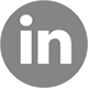 Go to PlantVision on LinkedIn »